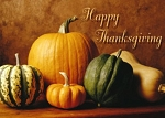 Holiday Cards - Thanksgiving Collection - Gourds of Plenty
