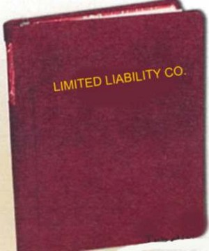 GENERIC LIMITED LIABILITY CORPORATE BOOK