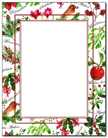 HOLIDAY PAPER: Christmas Botanical