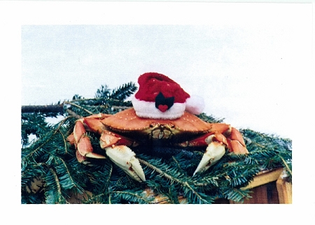 Holiday Cards - Regional Christmas Collection - Crabby Claus