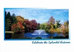 Holiday Cards - Thanksgiving Collection - Autumn Splendor