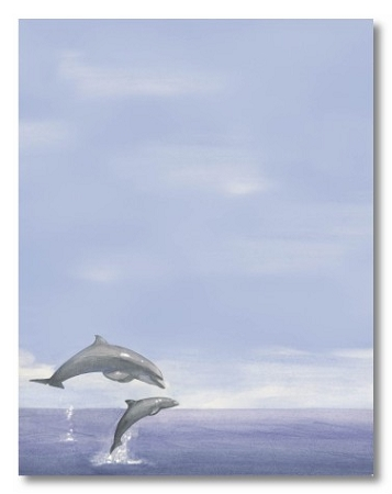 ANIMAL PAPER:  Dolphins