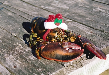 Holiday Cards - Regional Christmas Collection - Lobster Dock