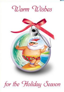 Holiday Cards - Holiday Card Collection - Santa Surfing Globe