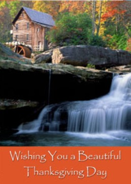 Holiday Cards - Thanksgiving Collection - Scenic Beauty