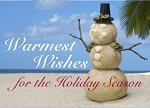 Holiday Cards - Holiday Card Collection - Snowman's Warmest Wish