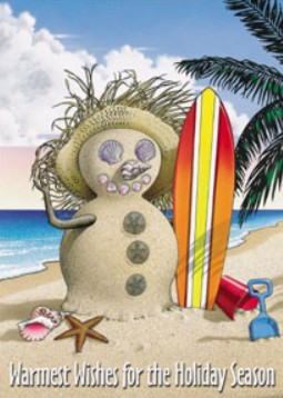 Holiday Cards - Holiday Card Collection - Surfing Snowman