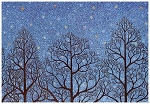 Holiday Cards - Nature - Night Prayer