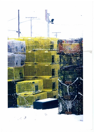 Holiday Cards - Regional Christmas Collection - Winter Lobster Pots