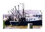 Holiday Cards - Regional Christmas Collection - Winter Trawlers
